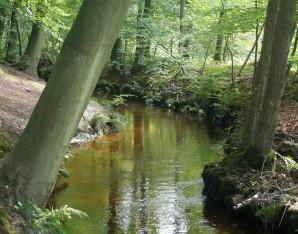 Natuur, milieu, bodem en water